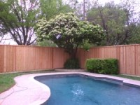 18. Eight-Foot Board-on-Board Cedar Fence with Pressure ...