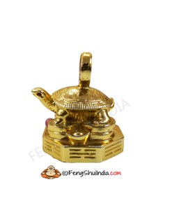 Golden Turtle With Coin