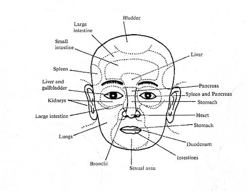 Module #3 Academy of Healing Nutrition