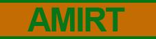 AMIRT S.L.