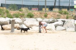 Playas para perros en Barcelona | Playa de Llevant