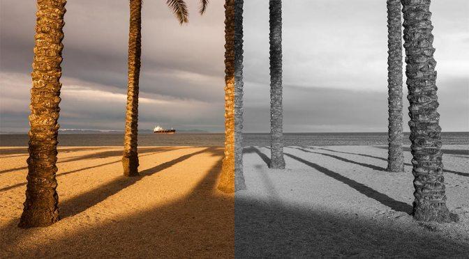 ¿Dejo la foto en color o la paso a blanco y negro?