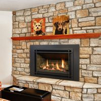 Valor G3, Gas, Fireplace Insert - Fergus Fireplace