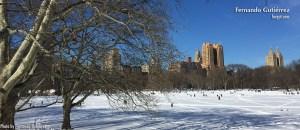 Central Park, New York 2016