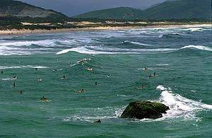 Surf: Surfistas fazem a festa nas boas ondas da Joaquina