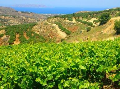 Kreta urlaub 2015