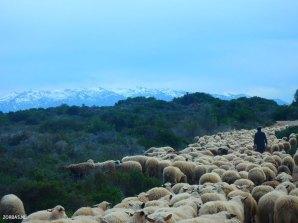 Weiße Berge von Kreta
