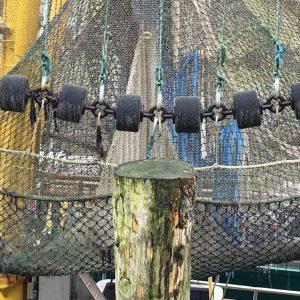 Fangnetze im Hafen