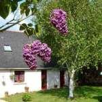 4 Ferienhaus Bretagne Kappeler Treguennec -aussen2 (2)