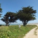 kappeler Bretagne Ferienhausvermittlung Ferienhäuser (1)