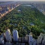 Pesquisas de Data Science em Nova York