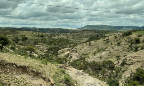 Mexican countryside