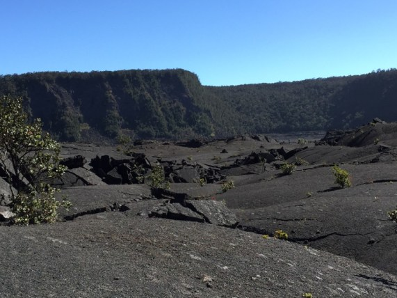 Big Island Hawaii - erkaltete Lava im Crater im National Park Volcano