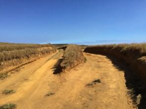 Big Island Hawaii - Green Sands - auf dem Weg dorthin 2