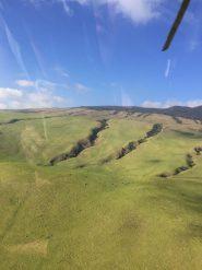 Big Island Hawaii - Helicopterflug mit Ausblick auf saftige Wiesen