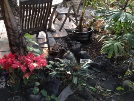 Big Island Hawaii - Captain Cook - wem gehören die Schuhe ?