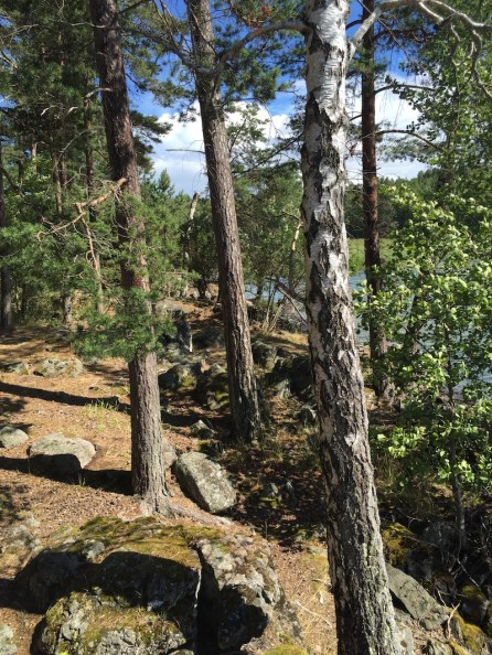 Fernwehblues-Schweden-28