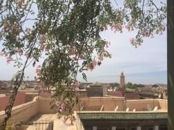 marrakesch-31