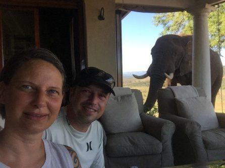 Gorah Elephant Camp - #ElephantPhotoBombing