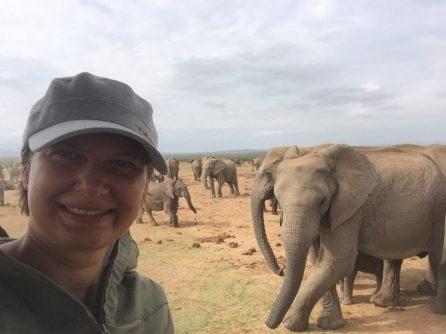 Addo Elephant Park - Herde am Wasserloch