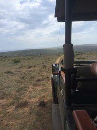 Addo Elephant Park - 1640 km² bis zum Horizont
