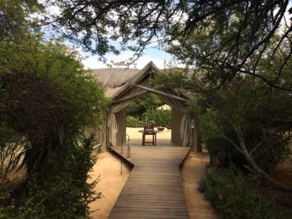 Afrika Addo Nationalpark - Weg zum Pool im Gorah Elephant Camp.