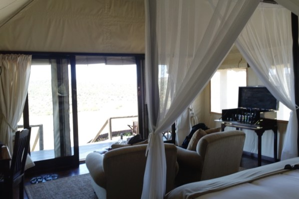 Afrika Addo Nationalpark - Ausblick aus dem Zelt - Glamping