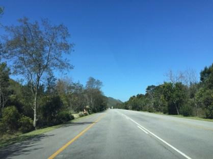 Afrika-Garden-Route-79