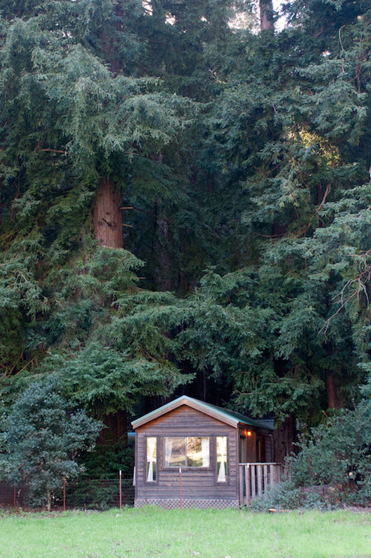 Forest Cabins Big Sur California  Fernwood Campground