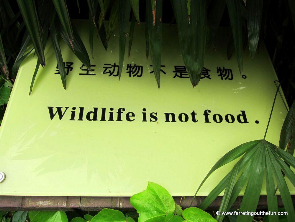 Wildlife is not food
