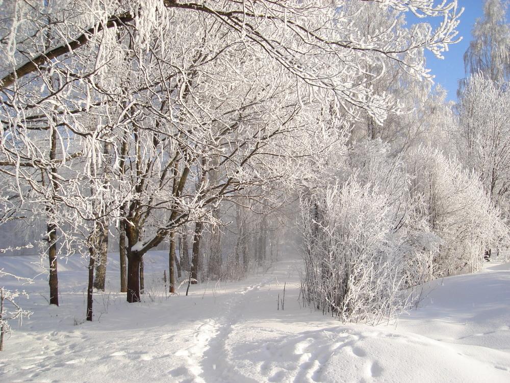Latvian winter 3