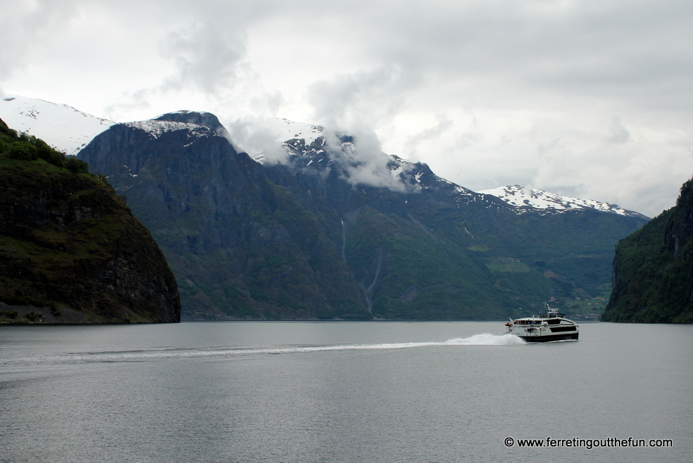 Norway in a Nutshell Fjord Cruise