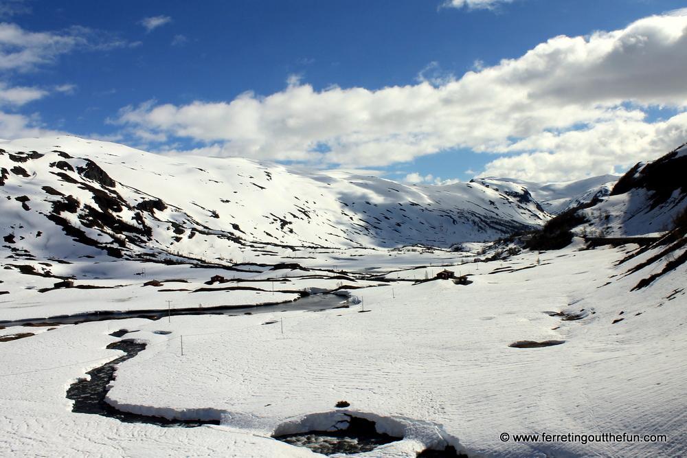 Norway in June