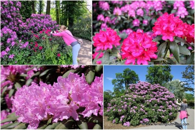 Riga Botanical Garden
