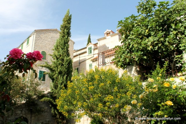 Sibenik medieval monastery garden