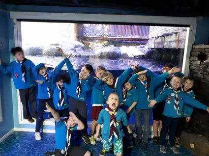 1516669500_496_ferriby-swanland-scout-group-updated-their-cover-photo.jpg