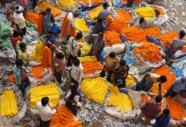 Der Flowers Market am Fuße der Howrah-Bridge bietet eine farbenfrohe Abwechslung zum grauen Kolkata