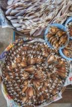 Fisch gibt es auf Thailands Märkten en masse. Mich wundert es, dass die Meere um Thailand noch nicht leer gefischt sind