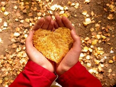 Expresando el amor: apoyo en este duro camino de la Infertilidad