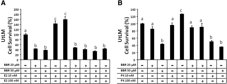 Berberine inhibits the proliferation of human uterine