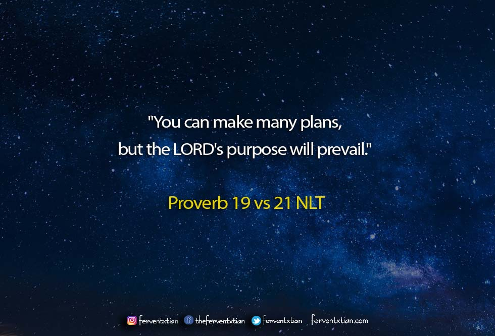 The Light Daily Devotional –  God the Master Planner