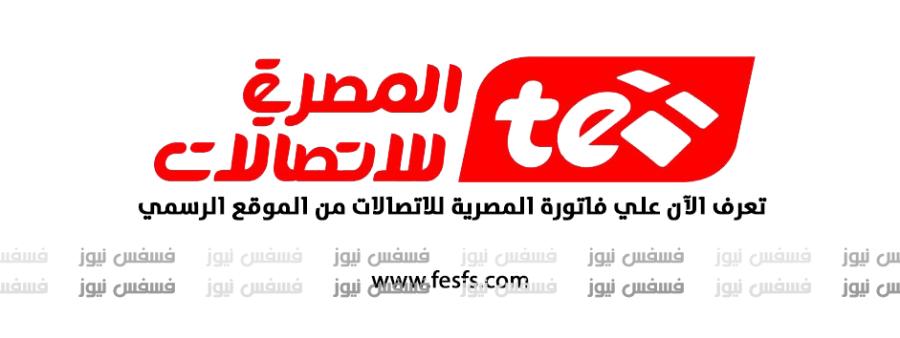 فاتورة التليفون الارضى 2019 المصرية للاتصالات Billing