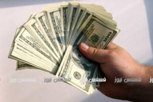 سعر الدولار اليوم الأحد ١٢-٢-٢٠١٧ في جميع البنوك المصرية