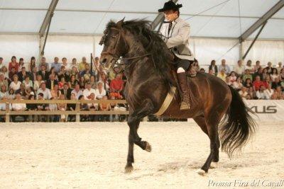 Sabadell - Fira del Cavall del Parc Central del Vallès (Foto: Premsa Fira del Cavall)