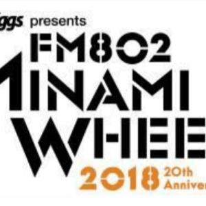 FM802 MINAMI WHEEL
