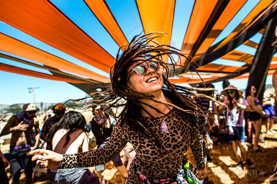 5 Tracks to Get You Excited for LIB