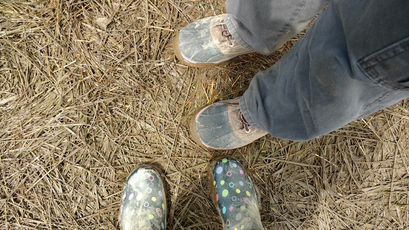 Music Festival Shoes