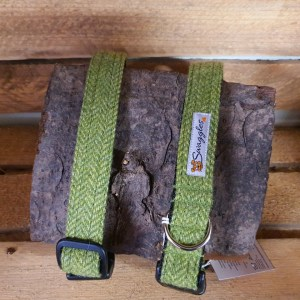Swaggles Bright Green Herringbone Tweed Collar