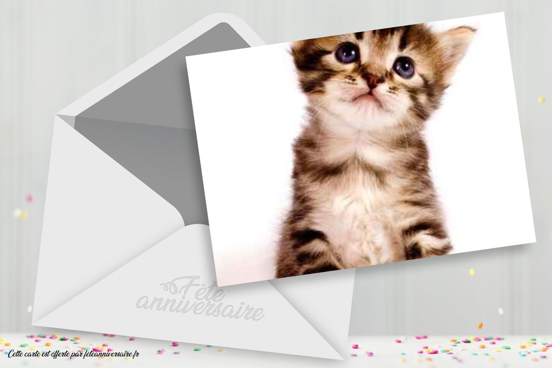 carte anniversaire chaton a imprimer