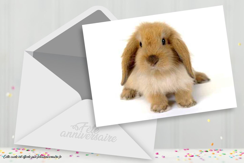 carte anniversaire lapin
